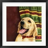 Framed Yellow Labrador Retriever