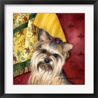 Framed Yorkshire Terrier
