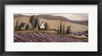 Lavender Fields I Framed Print