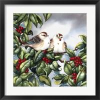 Framed Tree Sparrow