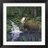 Framed Woodland Moose