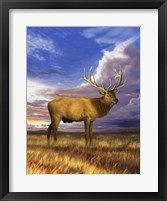 Framed Elk at Sunset