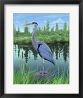 Framed Marsh Heron