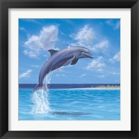 Framed Blue Water Dolphin