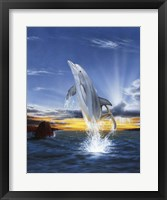 Framed Leaping Dolphin