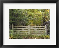 Framed Gate And Country Path