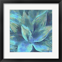 Framed Agave Forms III