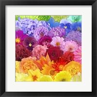Framed Rainbow Flowers