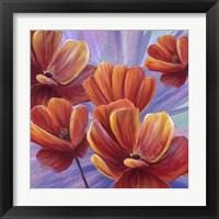 Framed Fiery Poppies