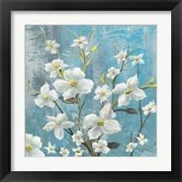 Framed Jasmine Bloom 2