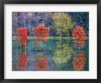 Framed Autumn