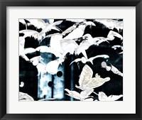 Framed Butterfly Paradise III