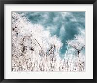 Framed Brisk Winter Sky