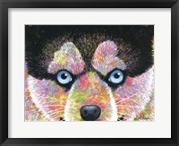 Framed Puppy Puppy