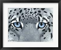 Framed Snow Leopard Eyes