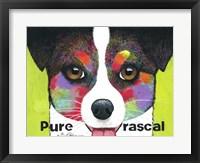 Framed Pure Rascal