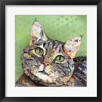 Framed Gato