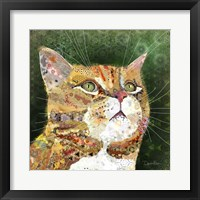Framed Ginger Tabby