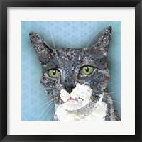 Framed Gray Tuxedo