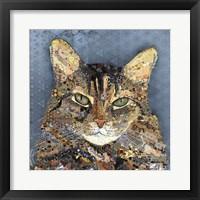Framed Henry Cat