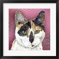 Framed Nixie Calico