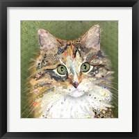 Framed Tilly