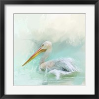 Framed White Pelican