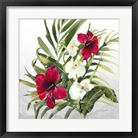 Beautiful Orchids D Framed Print