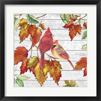 Fall Cardinals B Framed Print