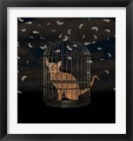 Framed BirdCaged Cat