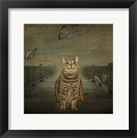 Framed Cat and Butterflies