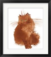 Framed Red Kitten