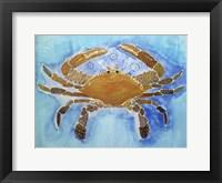 Framed Tattooed Crab