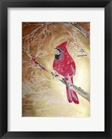 Framed Golden Cardinal