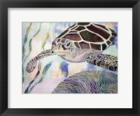 Framed Sea Turtle Beginning