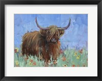 Framed Scottish Highland Cow