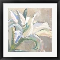 Framed Lily 1