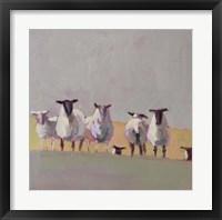 Framed Seven Sheep