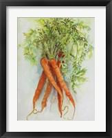 Framed Carrots