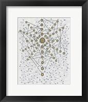 Framed Chakra Web