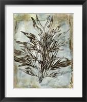 Framed Presence of Nature III