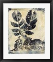 Presence of Nature V Framed Print
