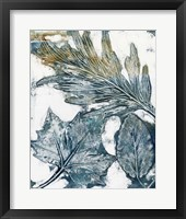 Presence of Nature VI Framed Print