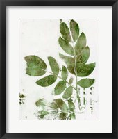 Presence of Nature X Framed Print