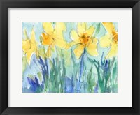 Framed Daffodil Blooms II