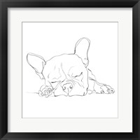 Framed French Bulldog Contour I