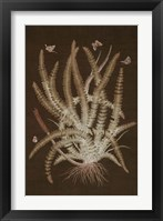 Framed Ferns in Roasted Brown II