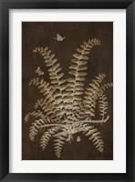 Framed Ferns in Roasted Brown V