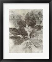 Framed Dogwood Leaves II