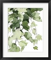 Framed Emerald Vines I
